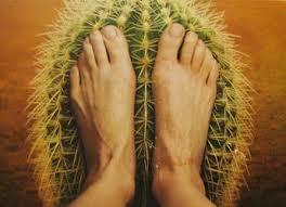 neuropathy cactus