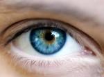 An-Eye-300x224